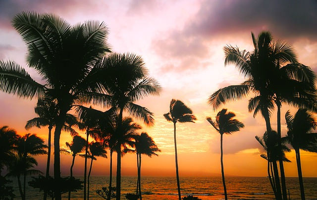 The most popular overseas destination is Honolulu in 2018-2019 New Year holidays, according to HIS bookings