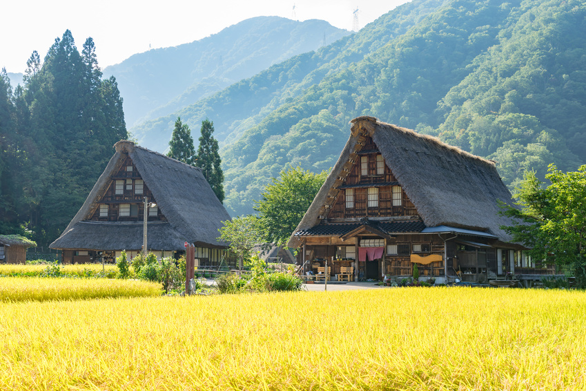 Japanese travelers stopping by a historic town or village in Japan while traveling account for 32%