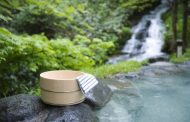 Traveling rate, travelers and guest nights in the domestic travel market of Japan increased for two years in a row