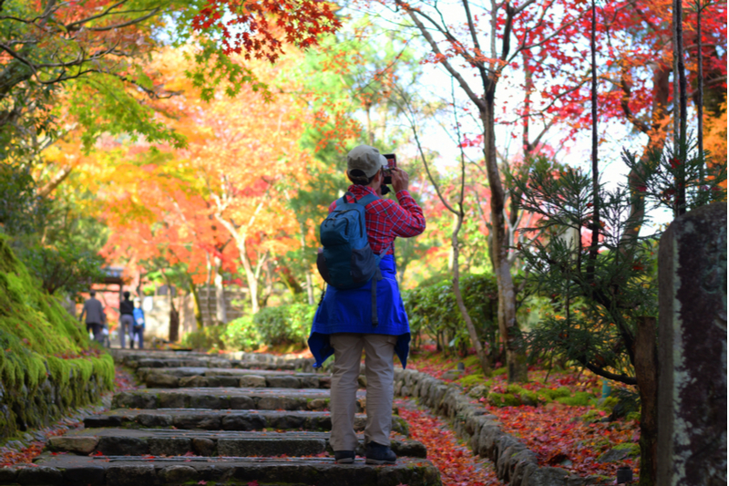 International visitors to Japan down 0.4% in November 2019, year-on-year reduction for two months in a row