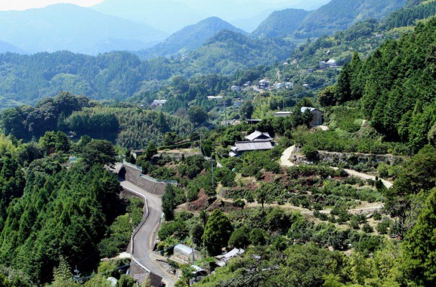 徳島県勝浦町、ワーケーションやお試しサテライトオフィスを支援、旅費や体験料を補助、2022年3月まで