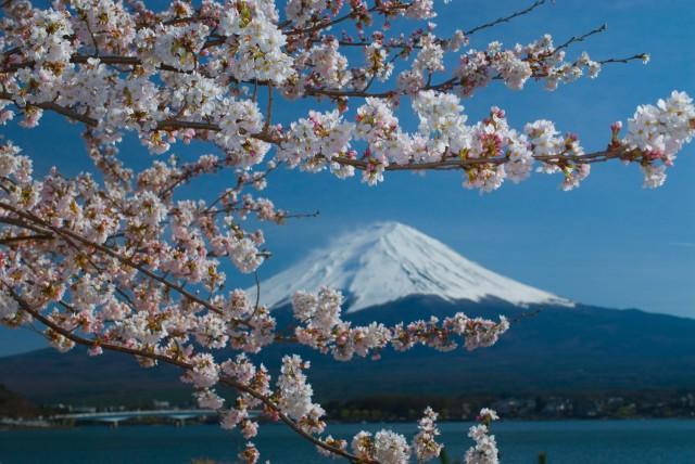 2014年度の観光庁関係予算は2%増の98.1億円、訪日は4%増
