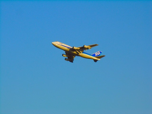 ANA/全日空、国際手荷物ルール改定、パートナーと統一でサイズは縮小