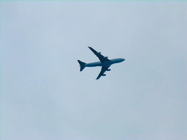 新関西国際空港、伊丹統合とLCC効果で増収増益 -2013年3月期決算
