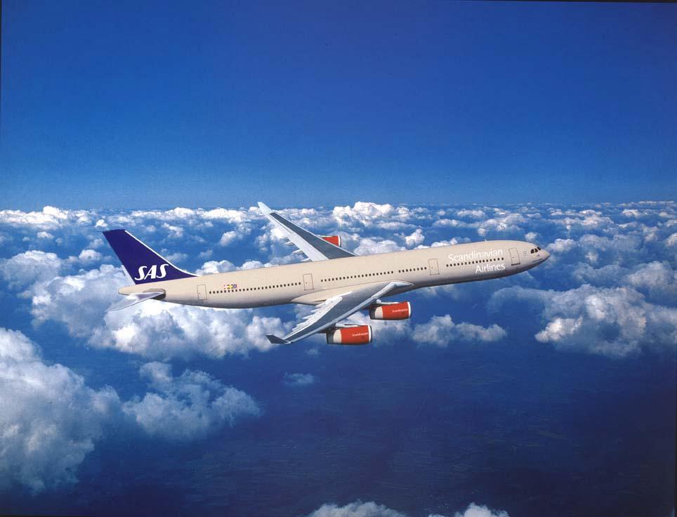 スカンジナビア航空、日本地区営業部長に前アメリカン航空の白石氏