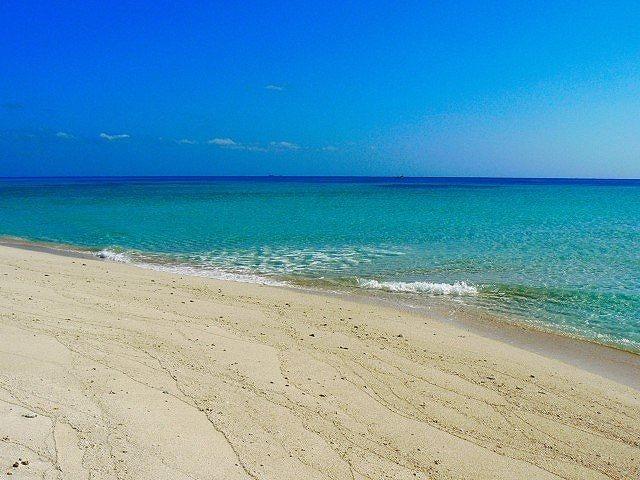 「グアムに来て」、副知事と観光局トップが「安全」を声明、今年の観光客数は過去最高を上回るペース