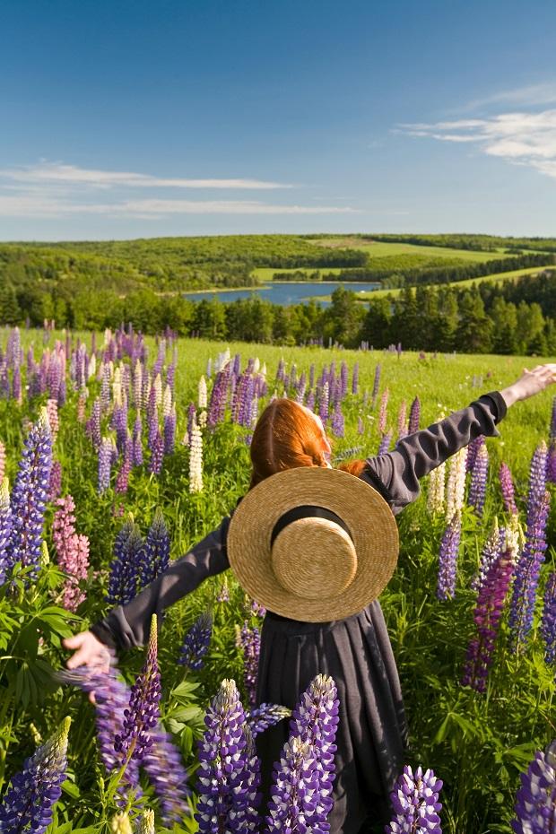 NHK朝ドラ「花子とアン」で高まる期待、カナダ・プリンスエドワード島