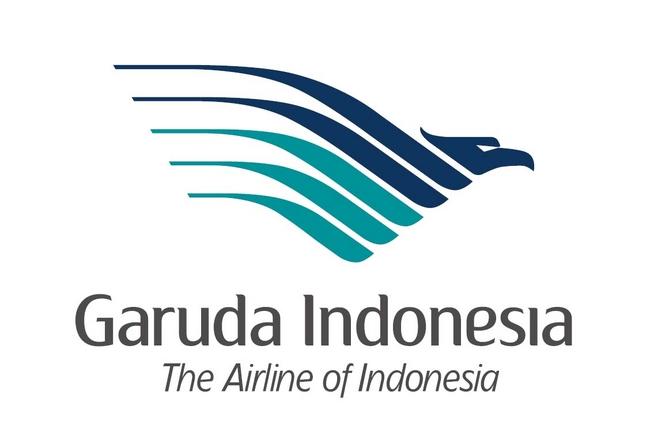 ガルーダ・インドネシア航空、2013年度は増収減益、スカイチーム加盟で国際線充実へ
