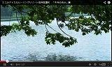長野県信濃町、SNSなど投稿分析のソーシャルリスニング活用でプロモーション