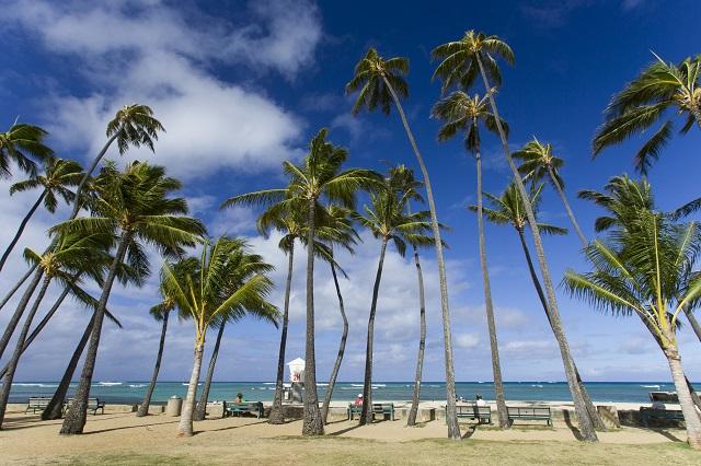 ハワイ・オアフ島、禁煙対象のエリアが2014年1月から拡大、ビーチや公園も
