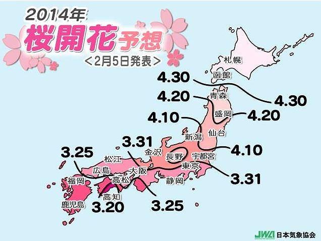 桜の開花予想、2014年は平年並み、一番は高知、関東は遅いところも