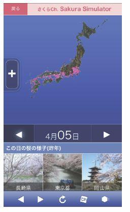 ウェザーニューズ、桜の開花状況を地図上で把握できる「さくらシミュレーター」を開始