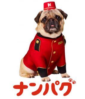Hotels.com、新キャラクター10匹のパグが渋谷を歩く「パグリシティ」を実施