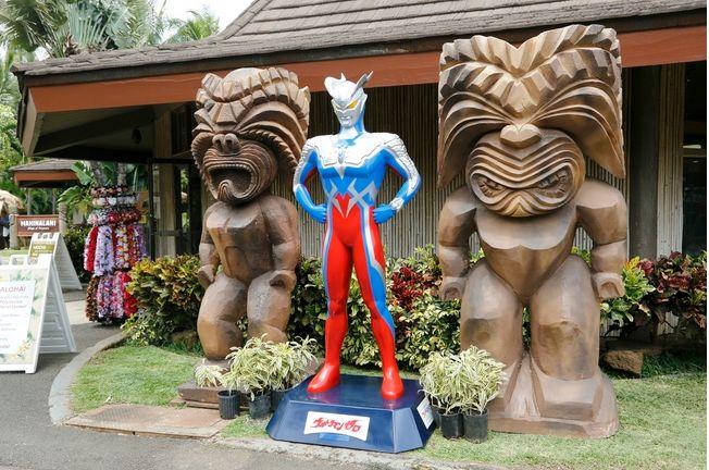 ハワイ・オアフ島、高さ2.5メートルのウルトラマン立像が4体登場