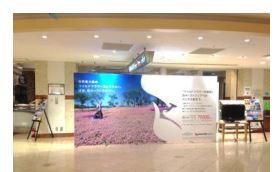 西オーストラリア州政府観光局、ワイルドフラワーの旅を訴求、京急グループの広告で