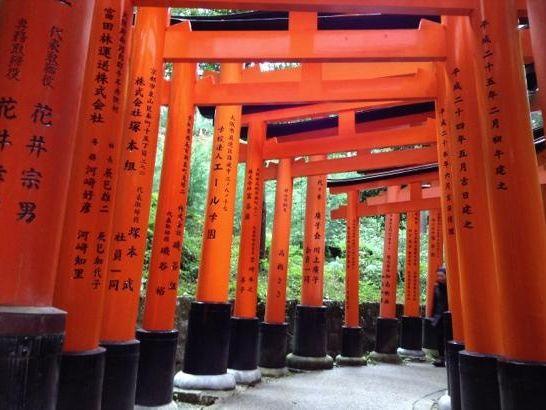 外国人のクチコミで人気、日本の観光スポットランキング1位は伏見稲荷大社に ―トリップアドバイザー2014年版