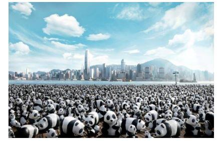 1600体のパンダが香港を巡るツアー、最新スポットPMQが最終ゴール【動画】