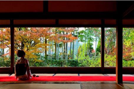 京都50軒の宿泊施設スタッフが選ぶ「京都の穴場紅葉スポット41選」、楽天トラベルが特集ページを展開