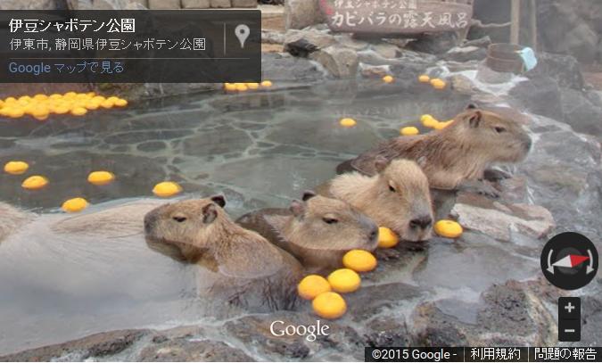 グーグル、日本の露天風呂25か所をストリートビューで公開、映画「テルマエ・ロマエ」ロケ地やカピバラの入浴地など