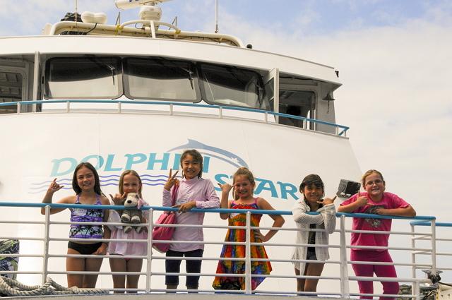 ハワイ・オアフ島のイルカウォッチツアー、夏季キャンペーンで子供1名が無料に ―スターオブホノルル