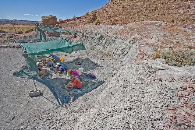 米・コロラド州、恐竜の化石堀体験スケジュールを発表、夏限定で実施