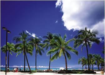 ハワイでバリアフリーを学ぶツアー、専門講師の同行で現地の施設見学など -HIS