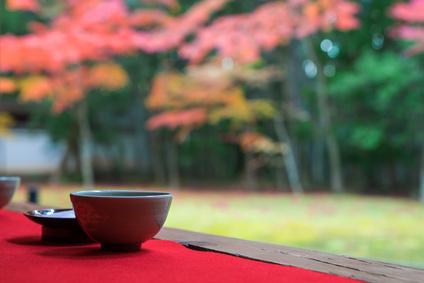 京都の通訳ガイド研修が始動、第1期は59名が新たな「特区通訳案内士」を目指す