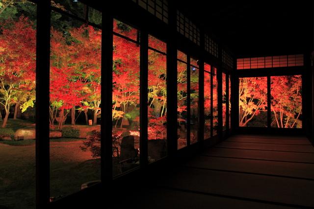 福岡・博多の神社仏閣を4日間限定でライトアップ、日本夜景遺産に認定も【画像】