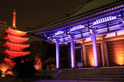 東長寺本堂・五重塔(福岡市:報道資料より)
