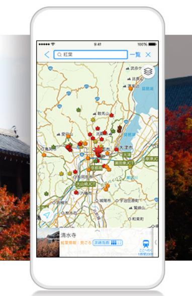 ヤフー地図アプリの紅葉情報2015、今年は混雑状況をヒートマップで表示、722か所の色づきを5段階で公開