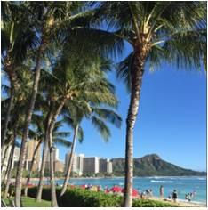 HIS、ハワイの自社ラウンジをリニューアル、個人旅行者や女性向けエリアを拡充