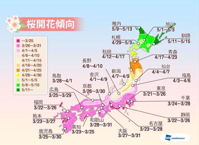 桜開花予想2016、今年は東京が3月21日で一番乗り、東日本~北日本は早めに ーウェザーニューズ