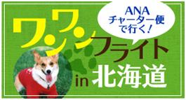 愛犬と機内で過ごせるツアー、北海道へのチャーター便で「ワンワンフライト」発売開始 -ANA