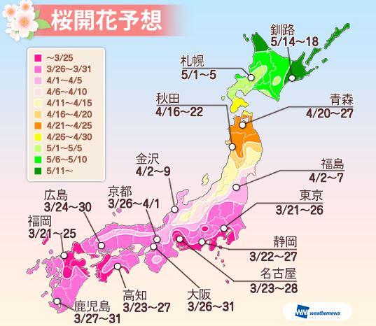 ウェザーニューズ桜開花予想(第2回)、東京の見頃は3月25日頃、西日本は予想早まる