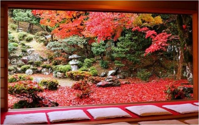 タイ人旅行者に人気の「秋の絶景」ランキング、1位は滋賀県・清瀧寺徳源院 -HIS