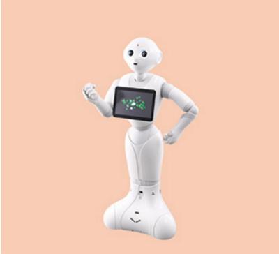 羽田空港のロボット実験で17事業者が決定、清掃・移動支援・案内の3カテゴリ、多言語対応や遠隔操作など実証実験