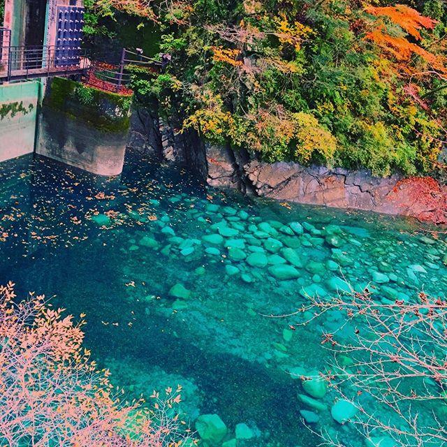 SNS映えするスポットランキング2016、トップは神奈川県「ユーシン渓谷」、笑い分野でトップ10も発表 【画像】