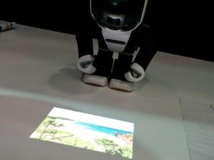 額のプロジェクターで現地映像の放映も可能