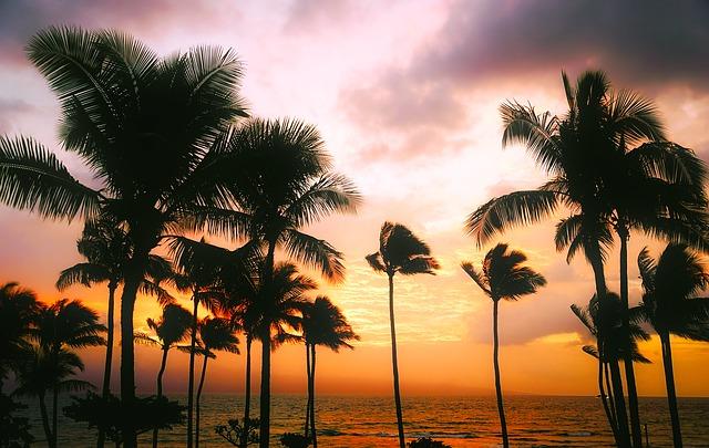 ハワイ州観光局、ハワイ島でのMICE開催に補助金、「レスポンシブルツーリズム」を含む案件に上限100万円