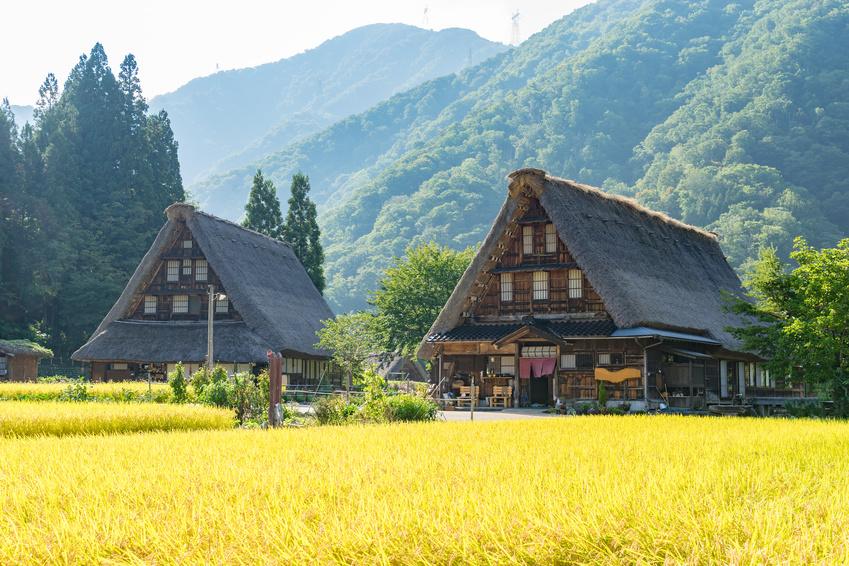 日本の「里山」を海外へ発信、ジャパンタイムズが新組織設立、インバウンド観光客対応や異業種マッチングなどで