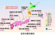 桜開花予想2017、東京や熊本など5カ所が一番乗りで3月22日、北日本は早めに