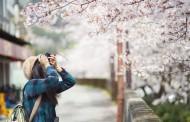 【図解】訪日外国人数、2019年3月は5.8%増の276万人、韓国・香港・オーストラリアなどで前年を下回る ―日本政府観光局(速報)