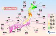 桜の開花がいよいよ来週末に、寒の戻りで例年より遅い傾向、上野公園は3月26日の予想