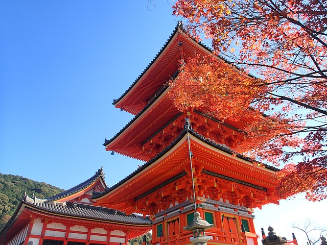 Kyoto City saw a 43% increase in Japanese guest nights in hotels in November 2020, the largest YOY growth ever