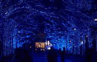 東京・渋谷で「青の洞窟」イルミネーション開催、動く光で波を演出、代々木公園とのコラボも【写真】