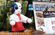NTT東日本がコミュニケーションできるロボット活用を促進へ、観光業などの要望でアプリ開発APIやOEM提供