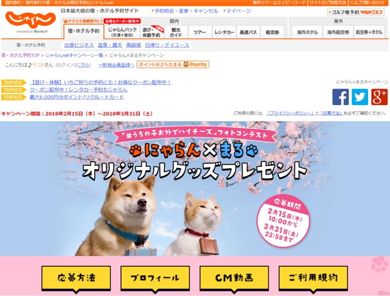 リクルート「じゃらん」が新テレビCM、SNSで人気の「柴犬まる」が登場、公式キャラクター「にゃらん」と温泉入浴など
