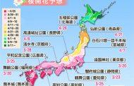 桜の開花予報2018、まずは東京・福岡で3月20日開花、北日本は例年並み予測