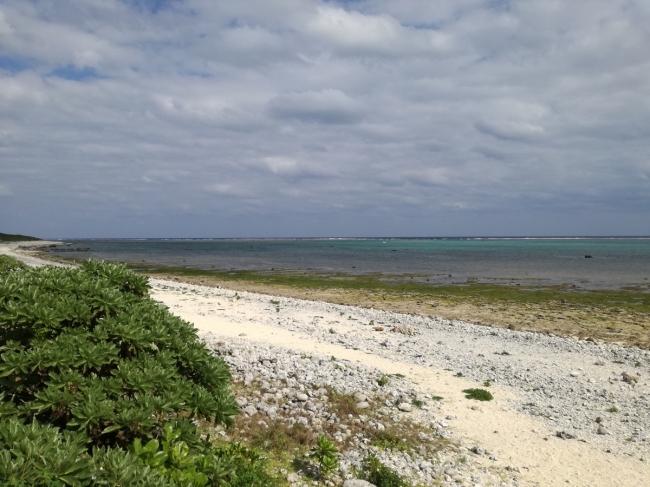 石垣島のリゾート開発に抗議声明、日本自然保護協会らが開発許可の撤回要求、国際的に重要な保全地域で