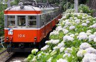 今年も箱根で宿泊割引クーポン発行、1万円分の宿泊券を7000円で提供、6月と9月に販売予定 ―箱根温泉旅館ホテル協同組合